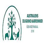 Australiens du grand marronnier